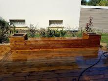 banc en bois bordure terrasse papyrus